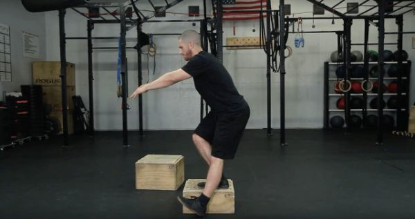 hip stability and mobility
